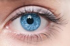 Comprendre le fonctionnement de l'œil humain