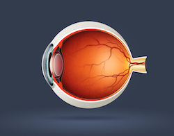 World Glaucoma week: What causes Glaucoma?