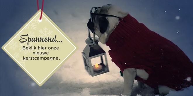 Gizmo is terug in onze nieuwe kerstvideo