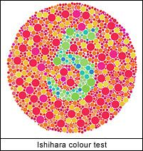 Ishihara Colour Test