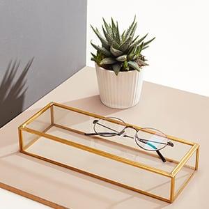 glasses-cactus
