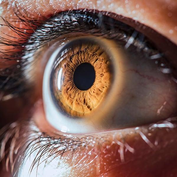 Ojo de color marrón con pupila dilatada