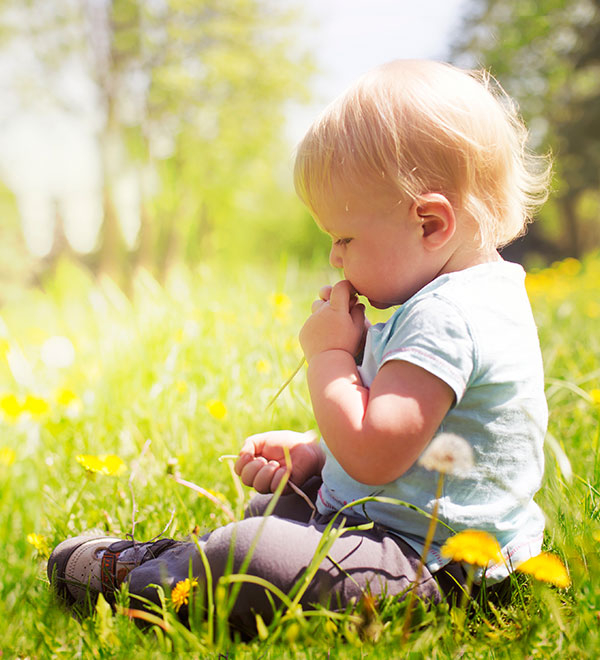 Can babies get hayfever?