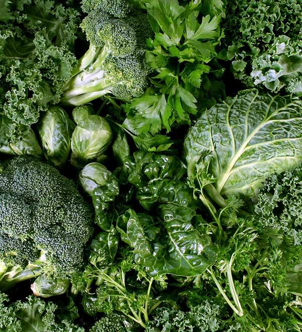 Verschillende soorten groene bladgroente