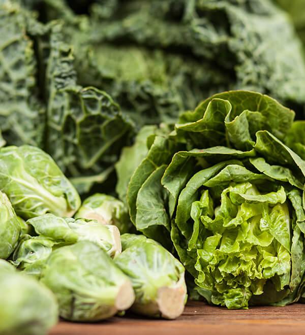 Kale et feuilles de laitue