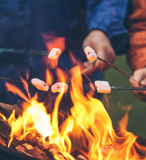 Les gens font frire des guimauves sur un feu de camp