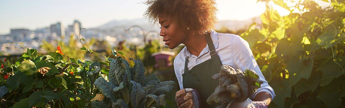 Woman wearing apron looking after plants in the garden