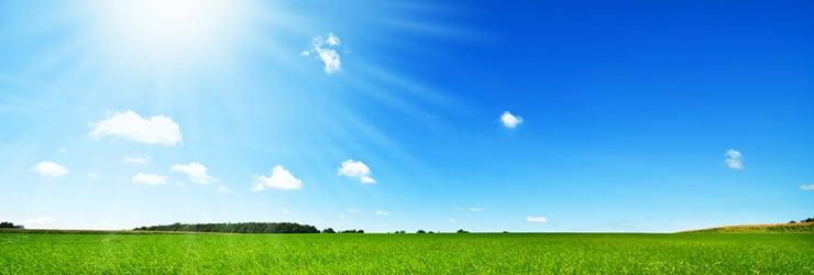 bright-sun-over-field