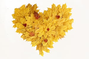 autumn-heart