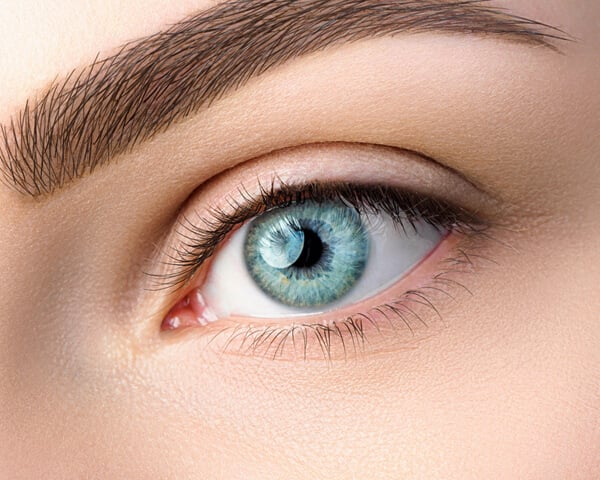 Types of coloured contact Lenses