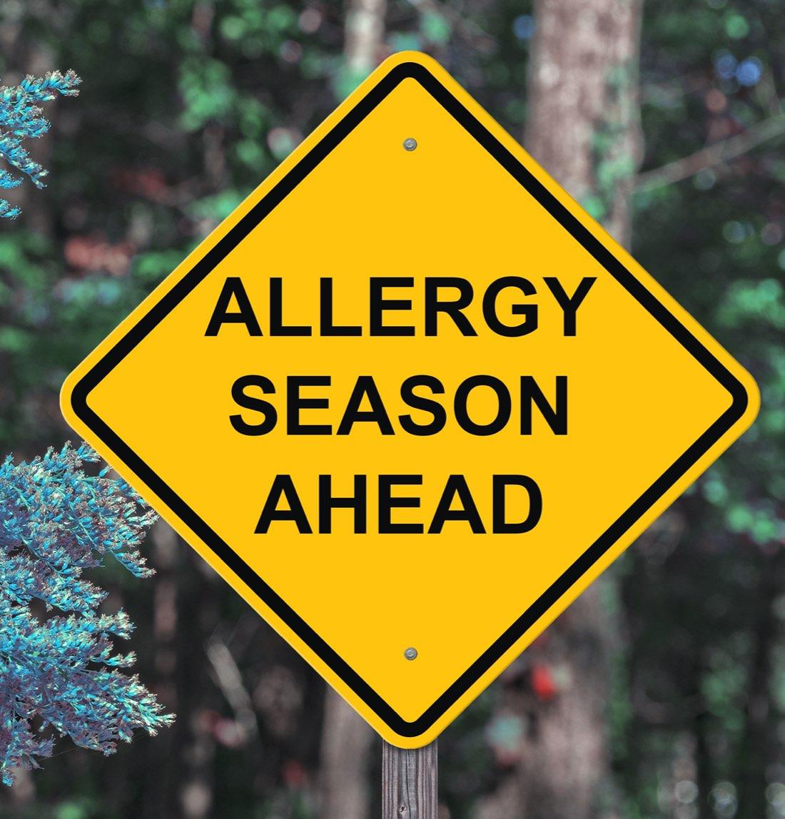 """Cartel que dice """"Temporada de alergia"""