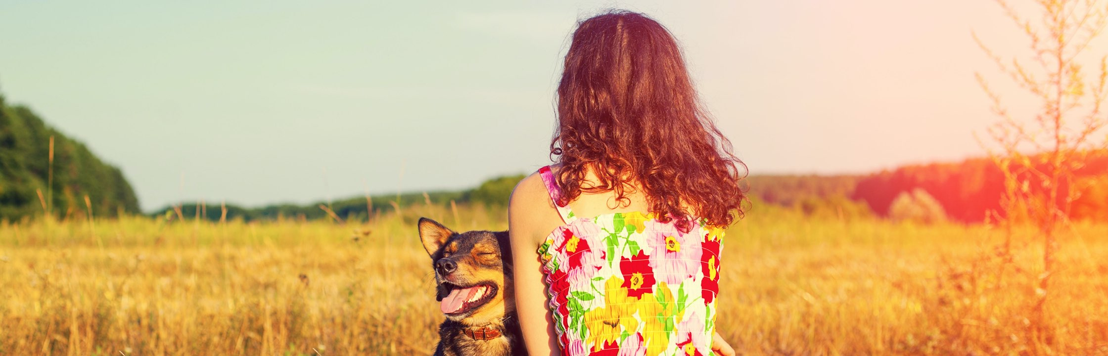 Woman with colourful dress and dog sitting in field