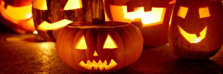 Halloween Weetjes.Nieuws Hol Je Eigen Pompoen Uit Voor Halloween Vision